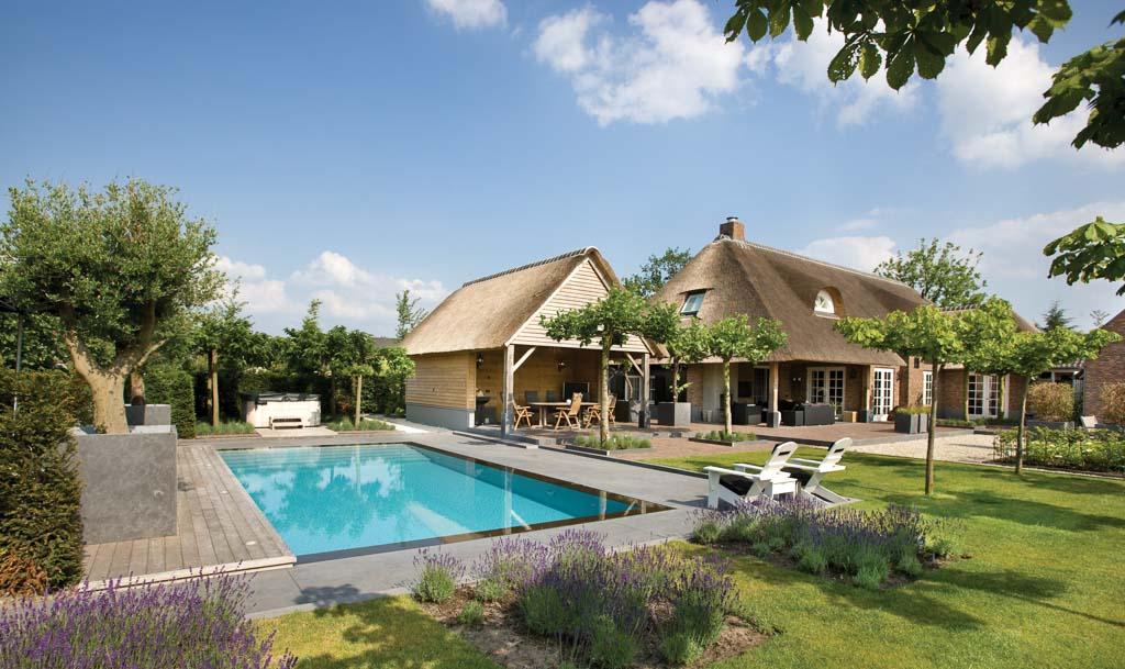 Strakke tuin met zwembad p p groenprojecten